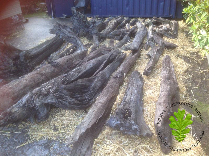 Irish Bog Oak - Drying