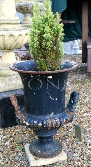 A Medium Size Period Cast Iron Urn