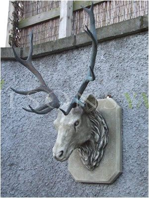 The Triton Collection - Stags Head Trophy