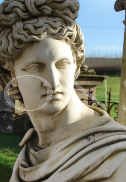 Apollo Belvedere On Tall Classical Fluted Column