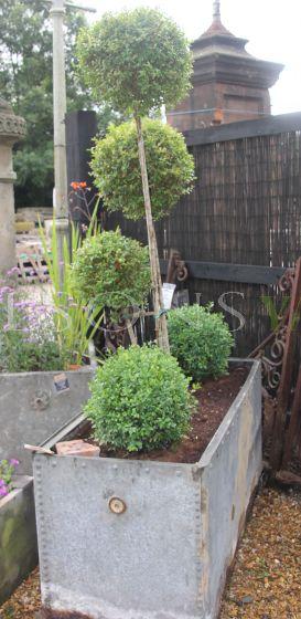 Large Galvanised garden tank planter