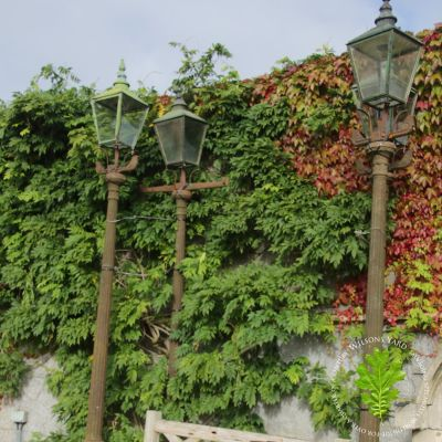 4 beautiful Belfast Town cast iron street lights