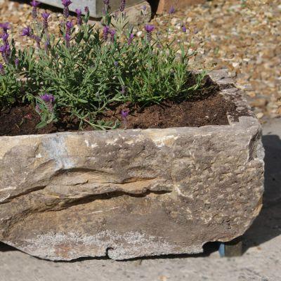 Original stone trough planter