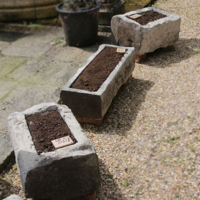Nice collection of small stone troughs