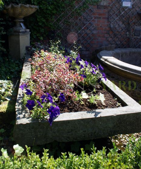 19th Century Shallow Herb Trough