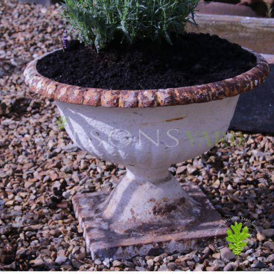 Antique garden planter